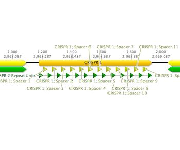 Screenshot of CRT